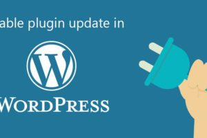 Plugin Updates in Wordpress