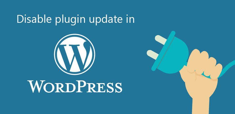 Plugin Updates in Wordpress